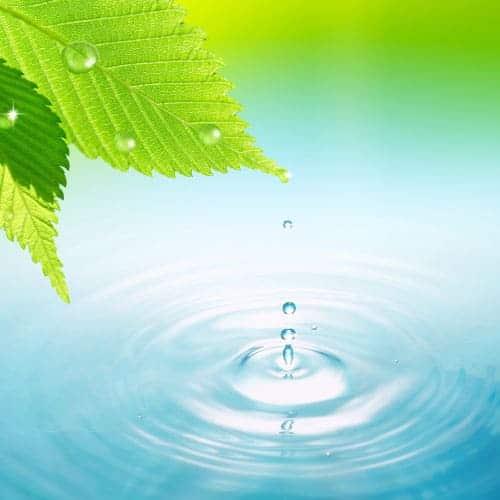 La gestion de l'eau préconisé dans notre gite écologique en Vendée - Ecolieu La Gataudière